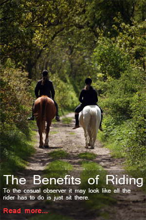 Benefits of Riding